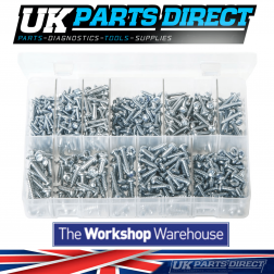 Self-Tapping Screws - Pan Head - Pozi (Small Sizes) - 700 Pieces - Assorted Box